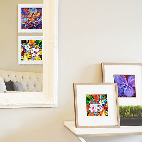 """Floral Abstractions - 5"""" x 5"""" Giclee prints on Ilford premium paper"""