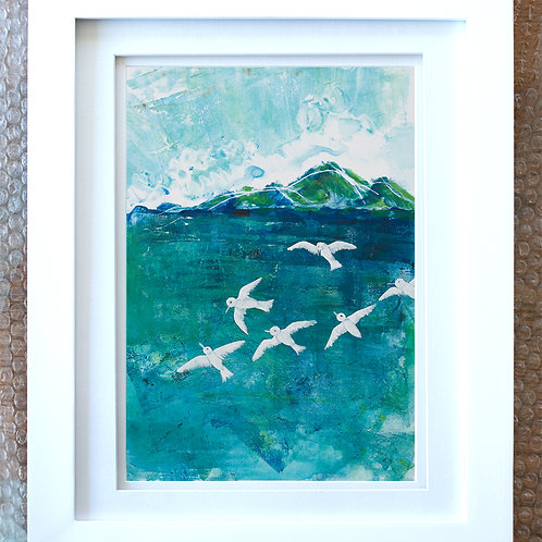 Terns - limited edition prints on watercolour paper, unframed