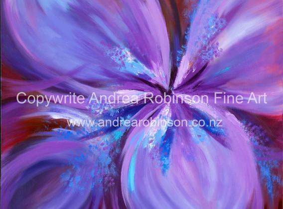 Purple Gladiolus