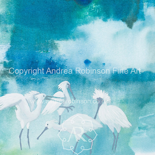 Royal Spoonbills  - SOLD - giclee prints available