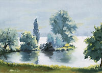 Sprat the Lake of Baldegg 1998, 46 x 33 cm