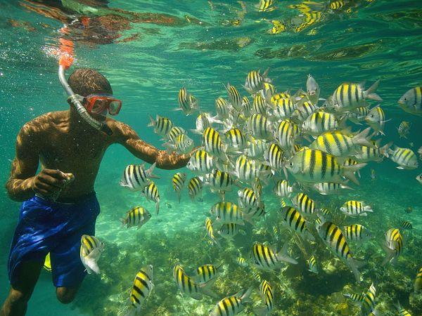 Snorkeling at Tres Cocos