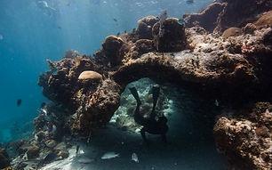 swim-through-the-cave_edited.jpg