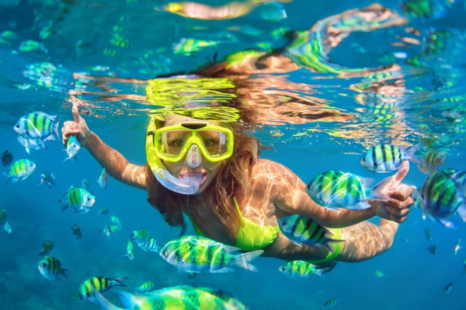 Hol Chan + 1 Snorkel