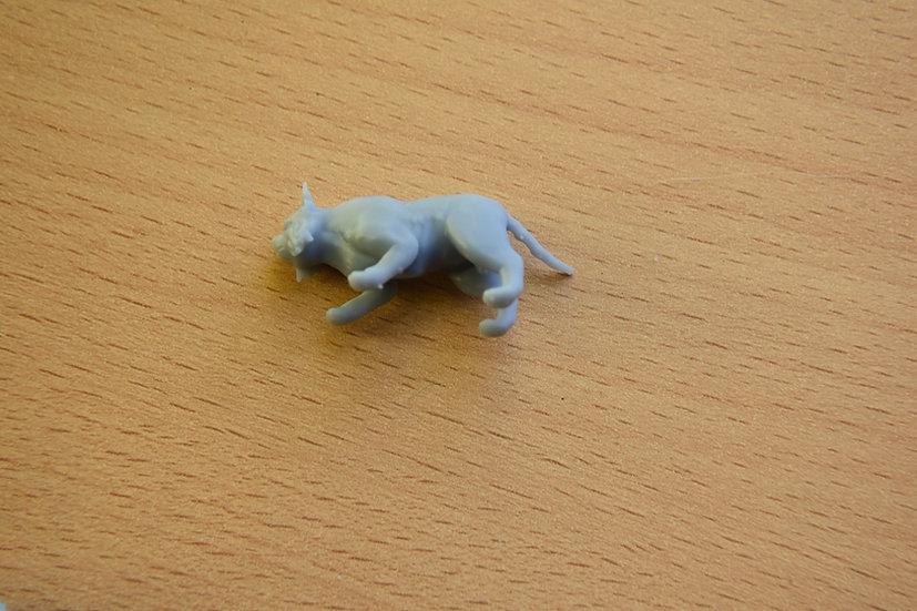 Lynx mort-vivant