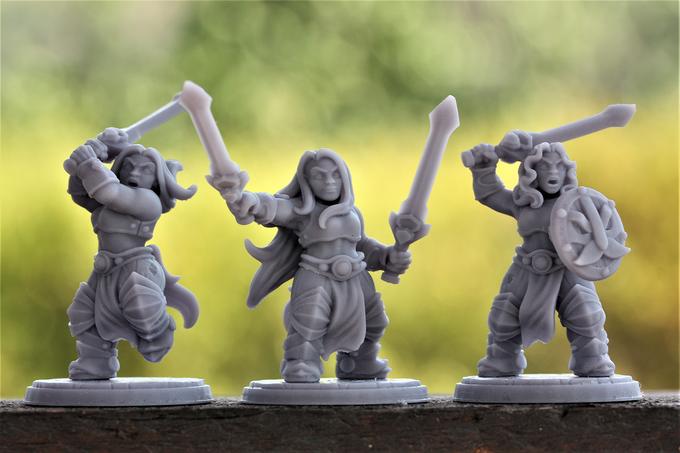 Set de 3 guerriers nains 4