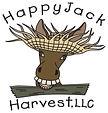 HappyJack.jpg
