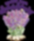 RSLL_Logo-Trans-01.png