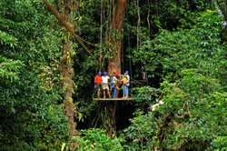 Manuel Antonio National PArk Canopy Tour, Canopy Tour in Quepos Costa Rica, Manuel Antonio National