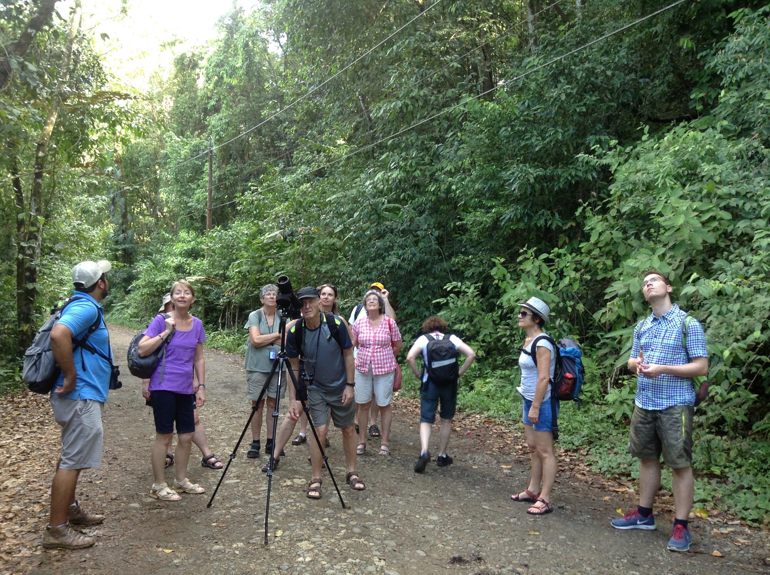 Manuel Antonio National park Tour, Costa Rica, Las Cascadas The Falls,  (12)