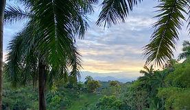 morning-Tree Top Canopy Combo, Hotel Las Cascadas The Falls, Condotel Las Cascadas, Manuel Antonio National Park, Manuel Antonio, Quepos, Costa Rica