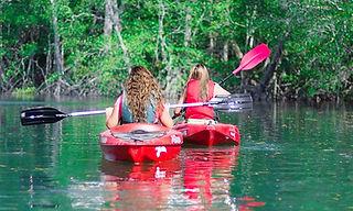 mangrove tours in manuel antonio, mangrove tours in quepos, mangrove tours in costa rica, damas island mangrove tour, costa rica mangroves, las cascadas the falls, mangrove tour, mangrove tours, damas island costa rica, damas island quepos, damas island in manuel antonio, mangrove boat tours, mangrove kayak tours, las cascadas the falls, Best Tour in Quepos, Quepos Tours