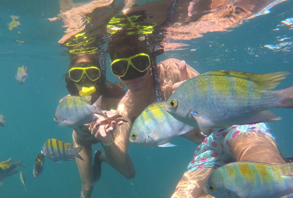 snorkeling tour photo 6 web