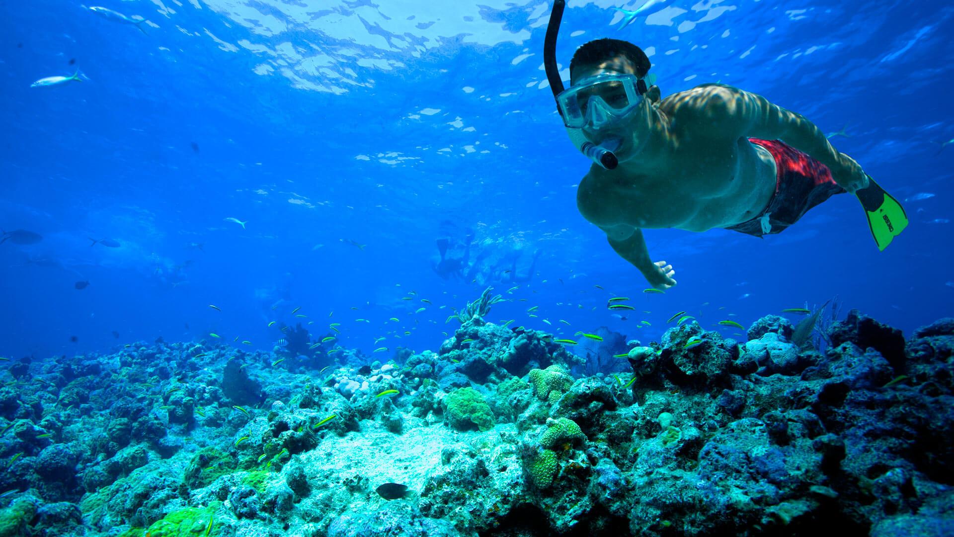 snorkeling tour photo 9 web