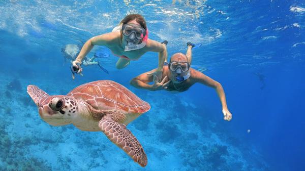 snorkeling tour photo 8 web