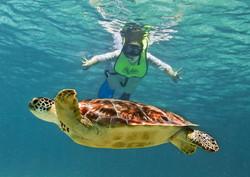 Snorkeling in Manuel Antonio National Park, Las Cascadas The Falls, Manuel Antonio National Park, Co