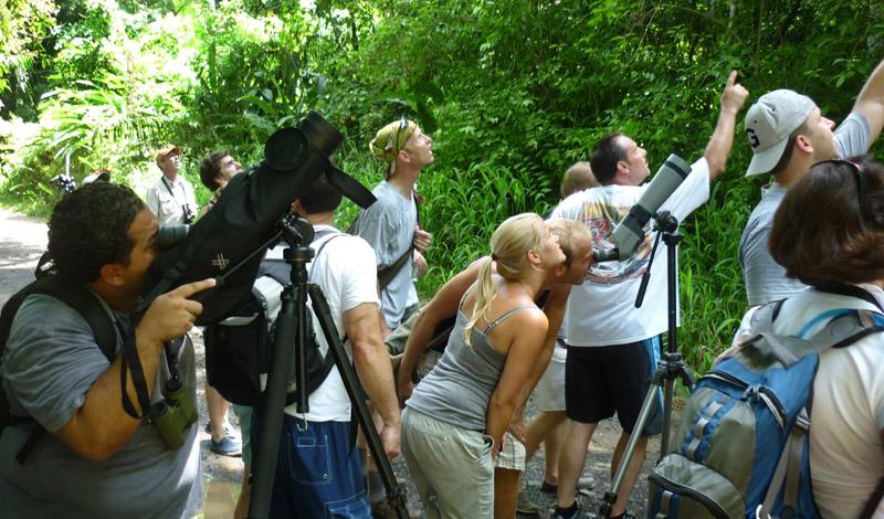 Manuel Antonio National park Tour, Costa Rica, Las Cascadas The Falls,  (10)