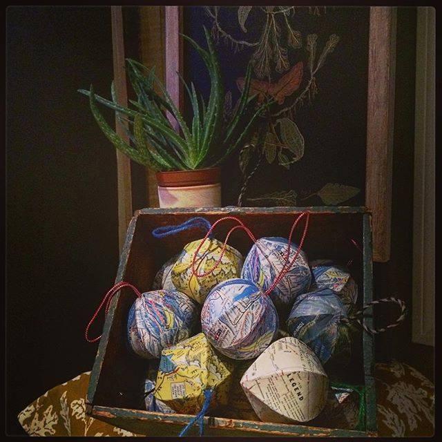 cacti globes