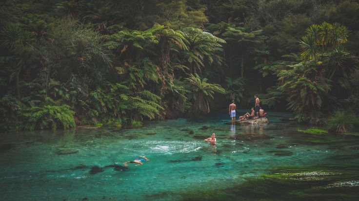 The Blue Springs