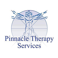 Quarter Page ad - Pinnacle Logo.jpg