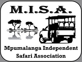 MISA official Logo grey corners.jpg