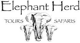 Elephant Herd Safaris.jpg