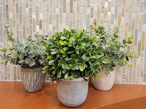 Artificial Potted Plant - Assorted