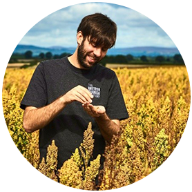 United Kingdom Quinoa Industry Expert