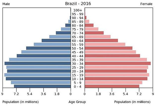 2016 Brazil population by gender & age