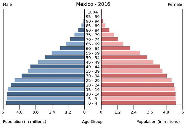2016 Mexico population by gender & age