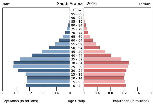 2016 Saudi Arabia population by gender & age