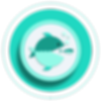 research-competitie-position-icon.png