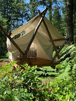 glamping prospector tent