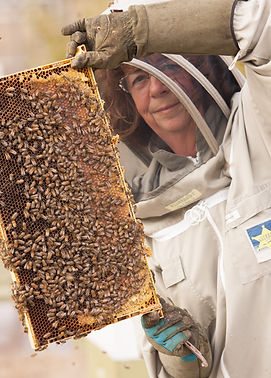smith-lake-farm-beekeeping.jpg