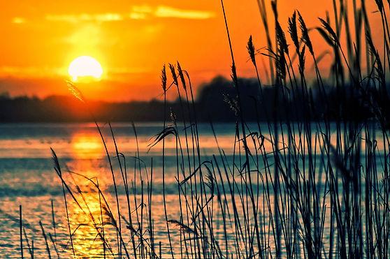 smith-lake-farm-sunset.jpg