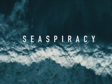 Seaspiracy Controversy: A Polarized Documentary about Commercial Fishing