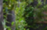 Churton Park-0098.jpg