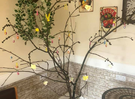 Occasion Tree