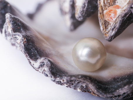 Why don't oysters share their pearls?