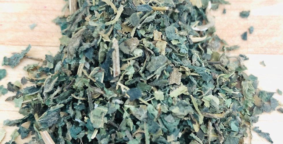 Organic Nettle (10 grams)