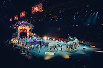 circus-828680_1920.jpg