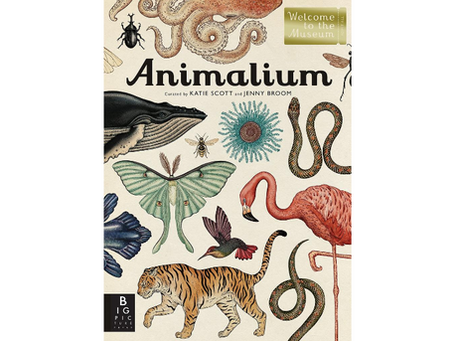 Animalium by Jenny Broom, Katie Scott (Illustrator)