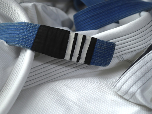 Know why blue belts always quit BJJ?