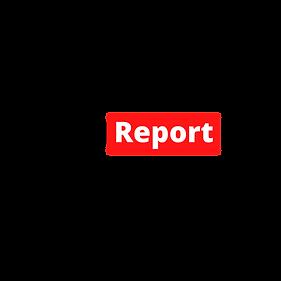 BJJ Report Logo