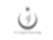 Ekran Resmi 2019-08-16 18.08.29.png