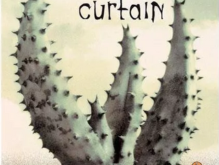 Review: The Tortilla Curtain by T.C. Boyle