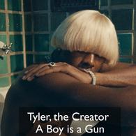 tyler the creator a boy is a gun .png