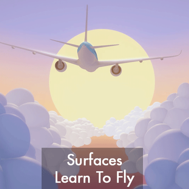 Surfaces Learn to Fly