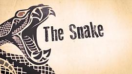 snake eric church MV LV music lyric video graphics animation
