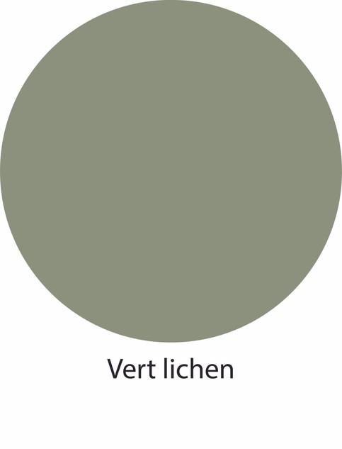 18 Vert lichen.jpg